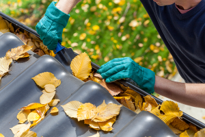 How Do You Clean Gutters?